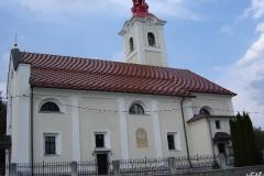 lukovica_(5)