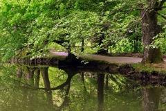 arboretum-volcji-potok