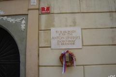 radovljica_(1)